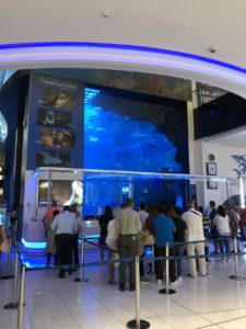 Shopping mall aquarium