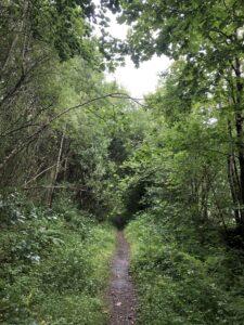 Footpath to Inveraray