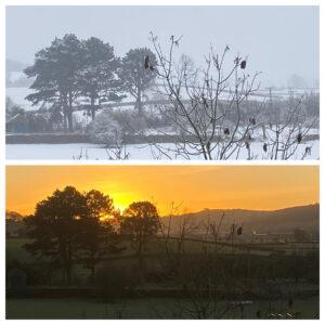 Winter/Sunrise