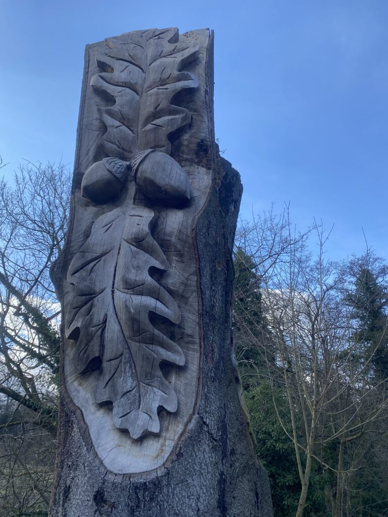 Oak Carving